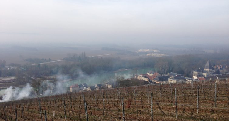 Mareuil vinice